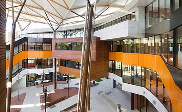 University of Western Sydney, School of Medicine